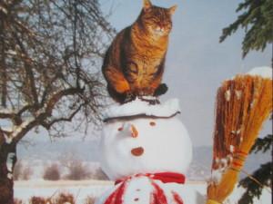 Winterende und Ernährung